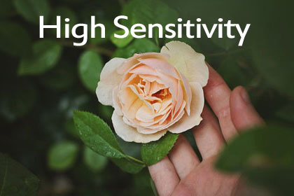 High Sensitivity (At TheraThrive, we specialize in gifted & highly sensitive)