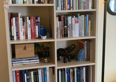 TheraThrive's room 5 bookcase in Lafayette, California (counseling and consultation)