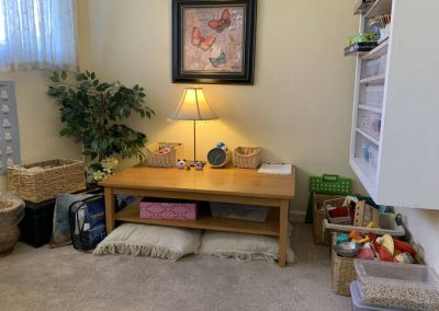 Room 6 play area at TheraThrive (therapy and consultation) in Lafayette, California